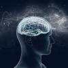 Депрессия стимулирует старение мозга