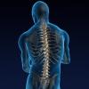 Остеохондроз:  признаки и лечение недуга людей «сидячих» профессий
