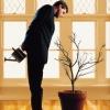 Коучинг для руководителей – открытые тренинги для современного бизнеса