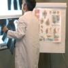 Современная ортопедия