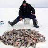 Все для рыбалки по доступным ценам