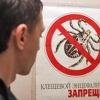 Инфекционная война: клещ как опаснейший враг человека