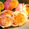 Доставка цветов по Омску - радуйте ваших близких чаще!