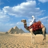 Что нужно знать о погоде в Египте тем, кто планирует туда поездку?