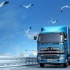 Международные перевозки грузов