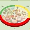 Для похудения достаточно трехразового питания