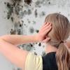 Что делать с плесенью на стенах в новом здании