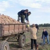 Омских студентов могут обязать к стажировке в селе