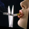 Что необходимо сделать для того, чтобы бросить курить?