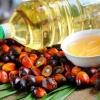 Пальмовое масло способствует развитию диабета