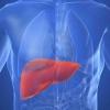 Как заражаются гепатитом В