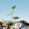 Нюансы утилизации отходов