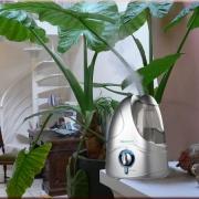 Увлажнители воздуха: зачем они нужны?