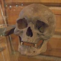 Сибиряки оказались потомками вымерших африканцев