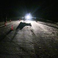 Ночью на трассе в Омской области сбили пешехода