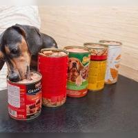 Консервы – важный элемент собачьего рациона