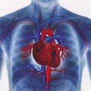 Сердечная недостаточность: Правожелудочковая