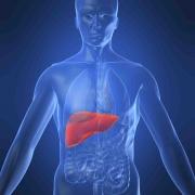 Гепатит B: можно ли вылечить неизлечимое?