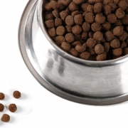 Почему собакам нужен специфический корм?