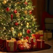 Новогодние ёлки признали опасными для здоровья