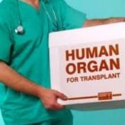 Успехи трансплантологии в области кардиологии