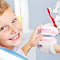Детская стоматология – особенная отрасль медицинской науки