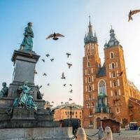 Доставка великолепны композиций из цветов в Краков