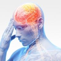 Ученые нашли способ замедлить развитие рассеянного склероза