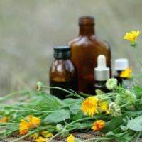 Фитотерапия как абонентское pr обслуживание вашего организма