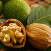 Грецкие орехи – ешьте на здоровье!