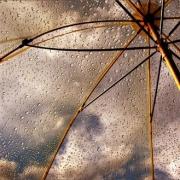 Дожди в Омске скоро закончатся