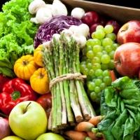 Переход на вегетарианство может помочь накормить больше людей