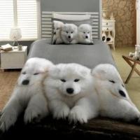 Как подобрать постельное белье