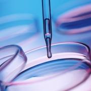 Медицинские анализы - здоровые инвестиции