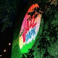 Крамер: «Омск начал быть джазовым городом»