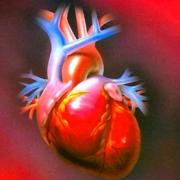 Сердца поставят на поток