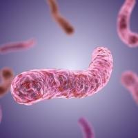 Как уберечь от туберкулеза себя и близких