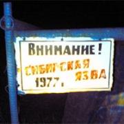 Сибирская язва вышла из-под земли