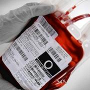 Проблемы с нехваткой крови решит Совет
