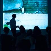 Омские студенты изучат основы  видеоарта