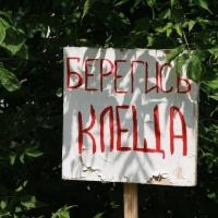 Омский минздрав предупреждает о заражении кладбищ клещами