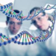 Анализ ДНК – определяющий фактор для будущего отцовства