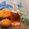 Чем полезно облепиховое масло?
