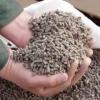 Нетрадиционные корма для животных