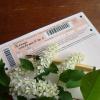 Как прошел ЕГЭ-2011: итоги выпускных экзаменов
