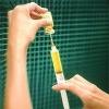 Прививки: как, зачем и почему