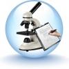 Что такое независимая экспертиза?