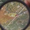 Методы оценки стоимости лесов и многолетних насаждений